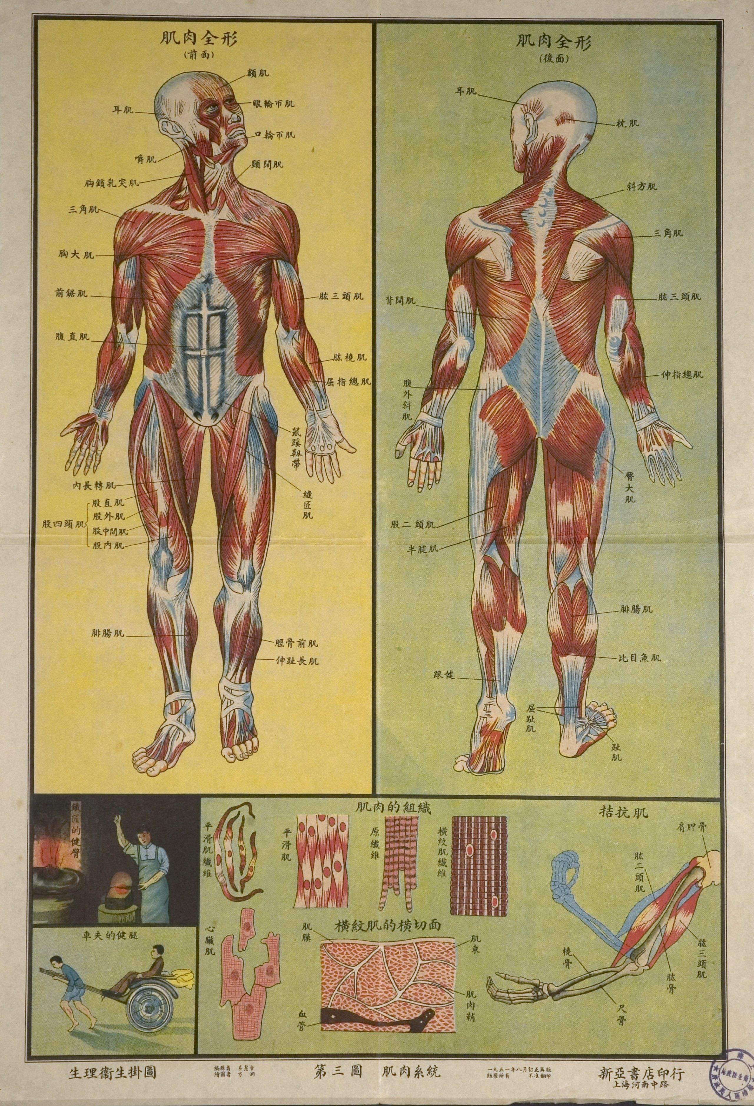 Chinese anatomy map from http://ihm.nlm.nih.gov