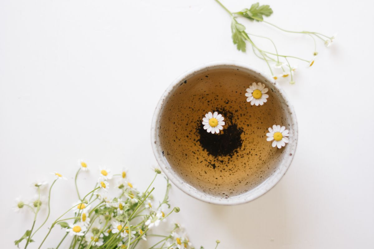 Feverfew Tea Bundles With Rosemary And Mint Rip Tan Recipe Feverfew Rosemary Mint