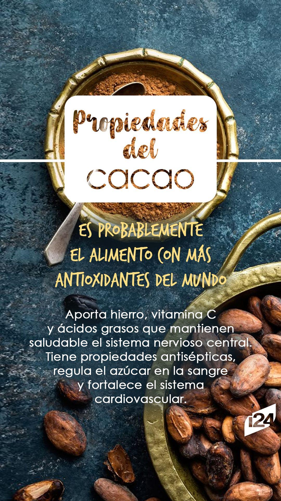 20 Ideas De Kaka0 Arbol De Cacao Cacao Beneficios Granos De Cacao