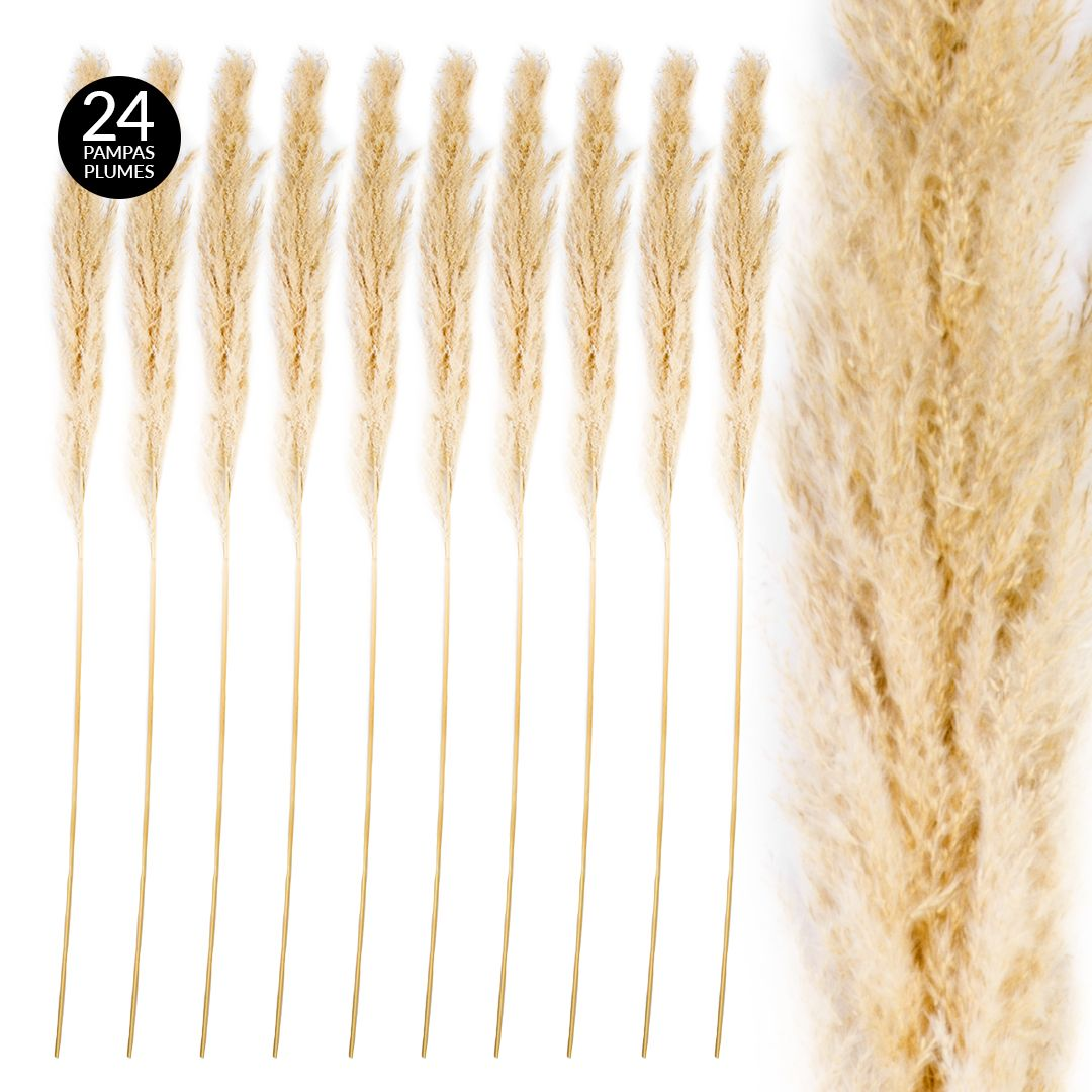 Koyal Wholesale Tall Natural Dried Pampas Grass Natural Cream