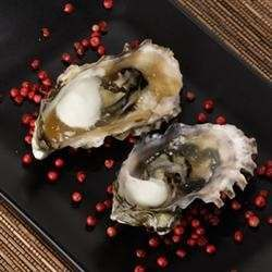 OYSTERS ARE COOKED ON THE GRILL IN THE SHELL, THEN SEASONED WITH LEMON JUICE, HOT SAUCE AND WORCESTERSHIRE SAUCE. A COOKED, NONALCOHOLIC VERSION OF A WELL-KNOWN FAVORITE, GREAT AS AN APPETIZER.