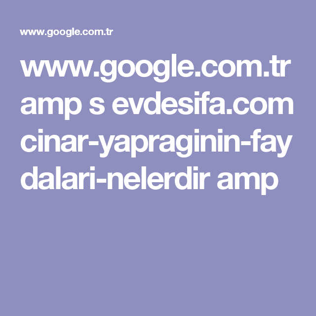www.google.com.tr amp s evdesifa.com cinar-yapraginin-faydalari-nelerdir amp