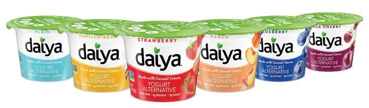 Daiya Coconut Cream Yogurt Alternatives Review Dairy Free