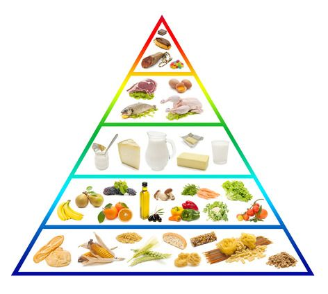 Common Myths Of Mainstream Nutrition Food Pyramid Pyramids