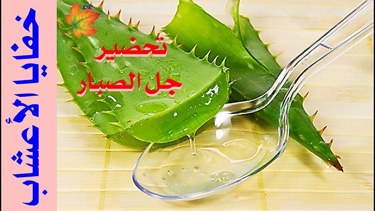 طريقة استخدام جل الالوفيرا للشعر Aloe Vera Benefits Aloe Vera Plant Aloe Vera