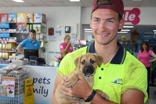This Guy Adopted A Puppy And Broke The Internet Puppy Adoption Puppy Photos Dog Adoption