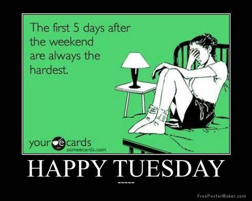 Happy Tuesday!