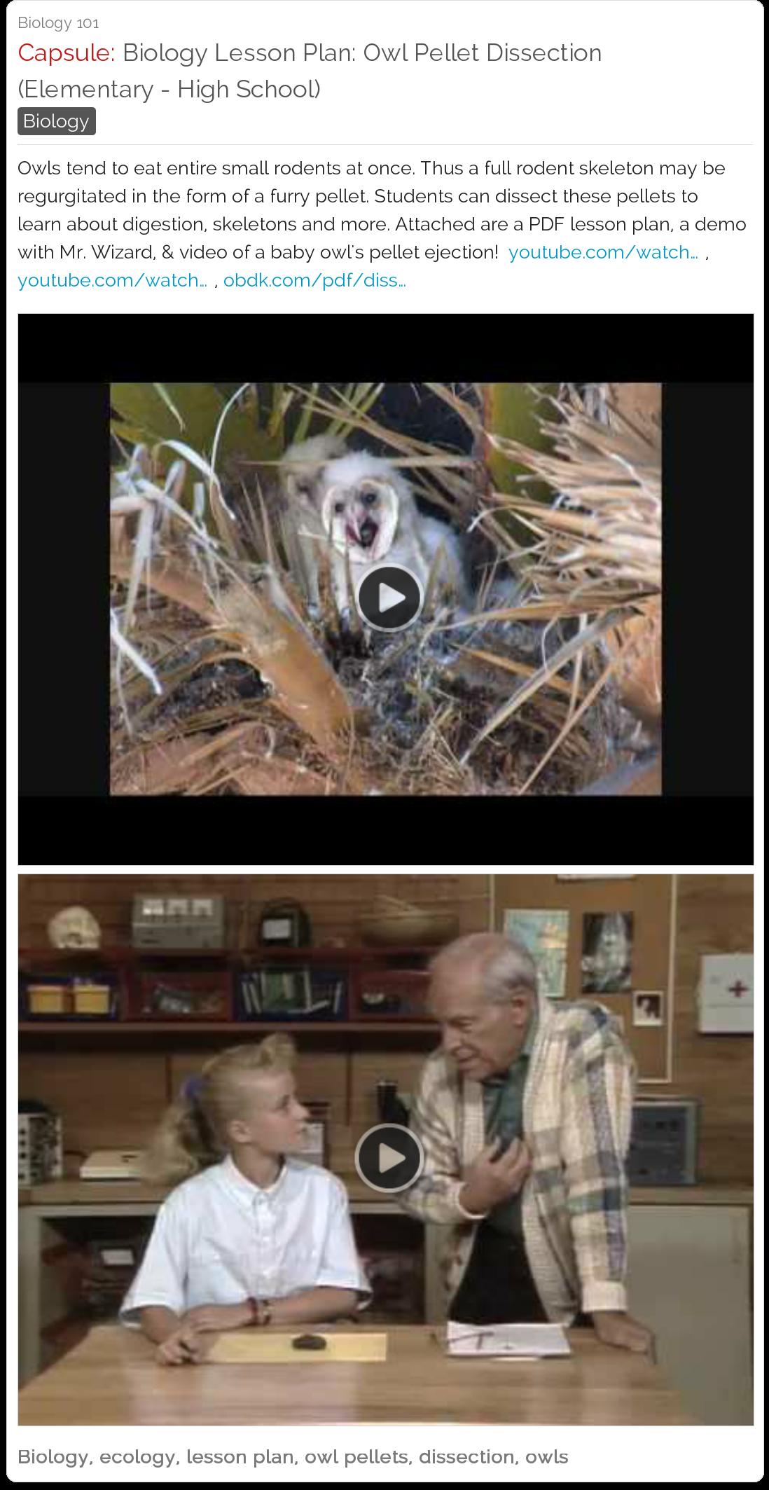Biology Lesson Plan Owl Pellet Dissection Elementary