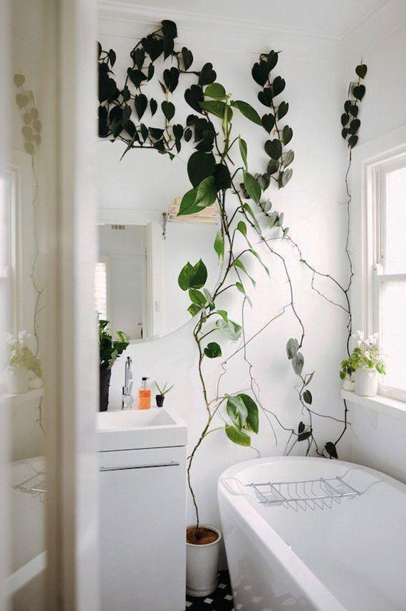 eine entspannende badezimmergestaltung mit pflanzen fürs bad ... - Pflanzen Für Badezimmer