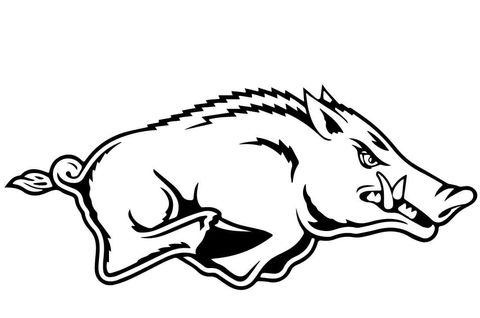Razorback Coloring Page From Wild Boars Category Select From 24652 Printable Crafts Of Cartoons Natu Razorback Painting Arkansas Razorbacks Crafts Razorbacks