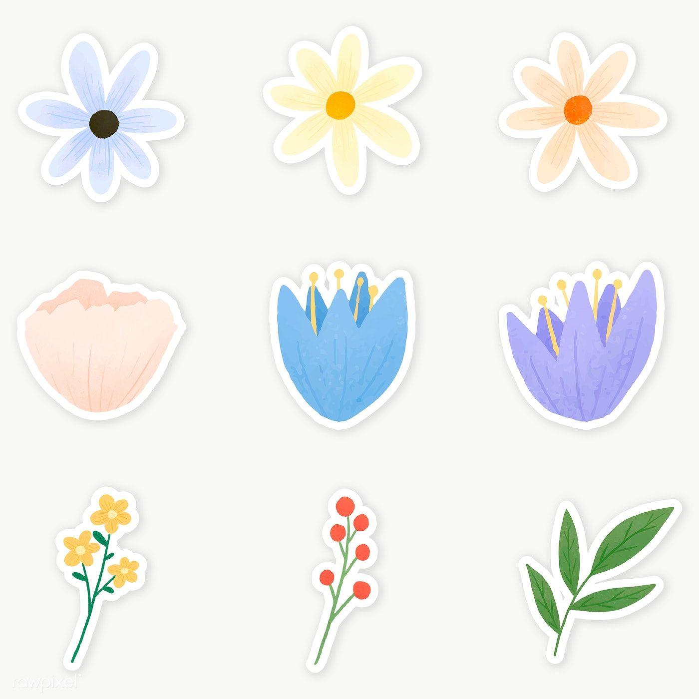 Colorful Floral Sticker Set Transparent Png Premium Image By Rawpixel Com Katie Moir Floral Stickers Flower Illustration Print Stickers