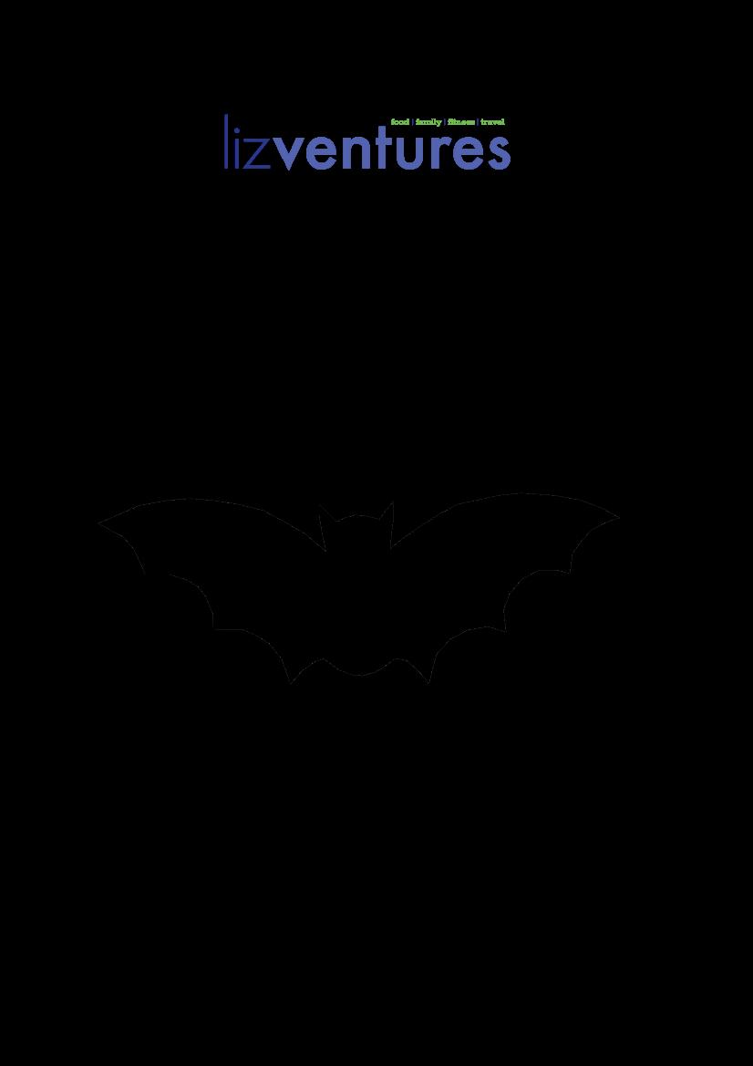 lizventures flying bat template crafts pinterest bat template