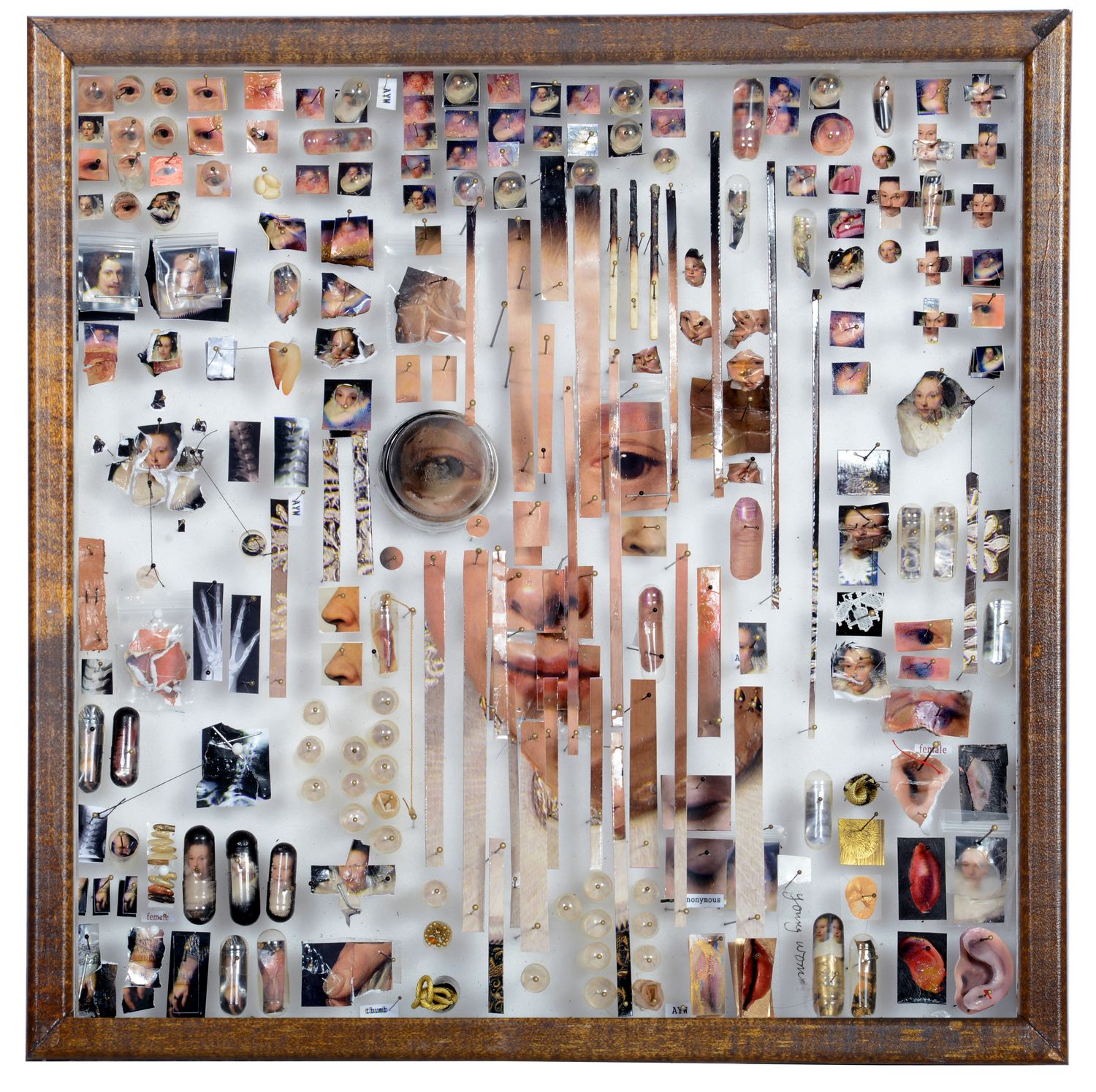 Case No. AYW  This piece of work is created by collecting different people's eyes and noses and other body parts, then categorizing them on the sides. And then putting together or creating a person's face in the middle of the work.