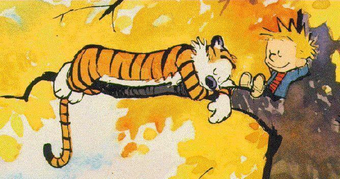 Calvin & Haroldo *-*