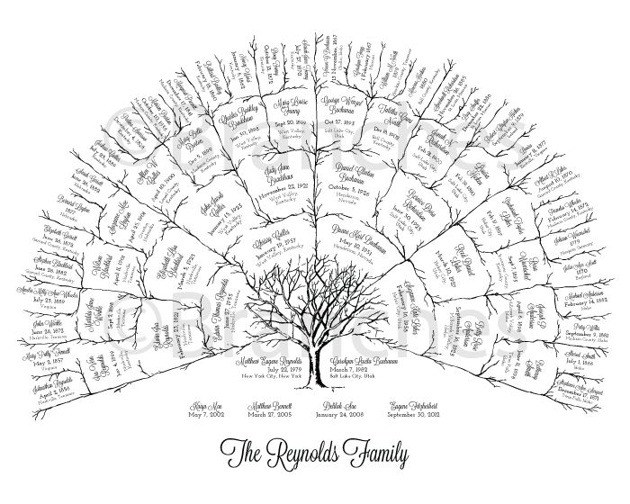 Personalized 5 Generation Ancestral Family Tree Fan Chart | For