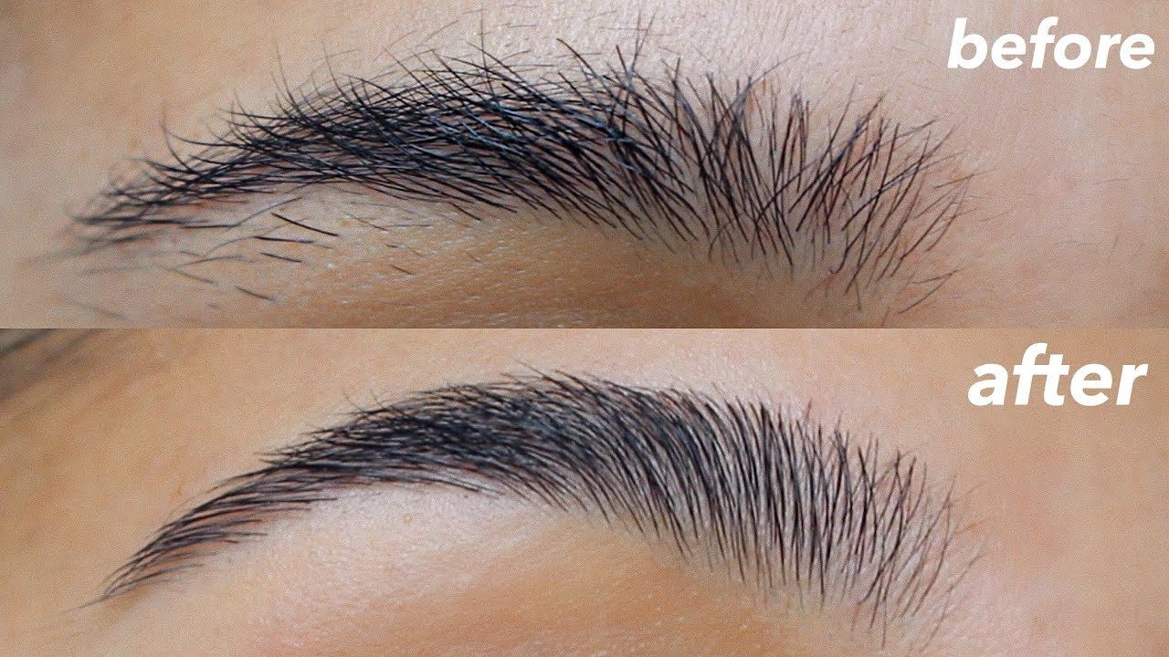 HOW TO GROOM + SHAPE YOUR EYEBROWS! (super easy) - YouTube ...
