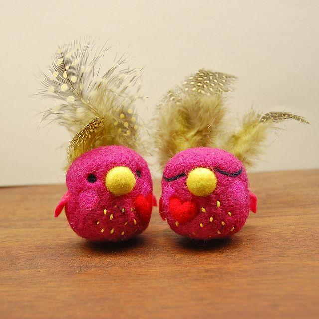 Love Birds in Raspberry   Flickr - Photo Sharing!