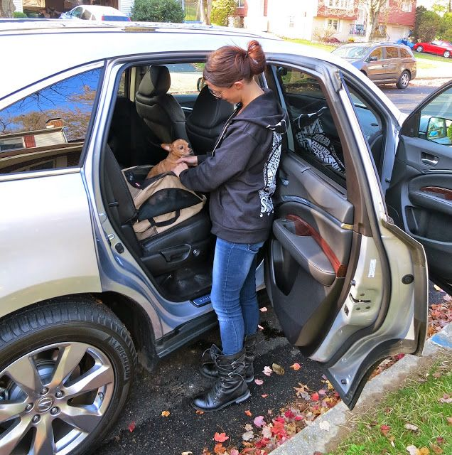 2014 Acura MDX: Drove It. Loved It. Here's 5 Reasons Why