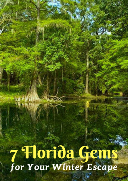 7 Florida Gems For Your Winter Escape Florida Activities Winter Escapes Best Places In Florida