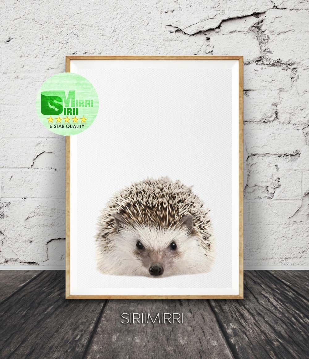 hedgehog print nursery animal print small animal print woodlands animals print nursery - Small Animal Pictures To Print
