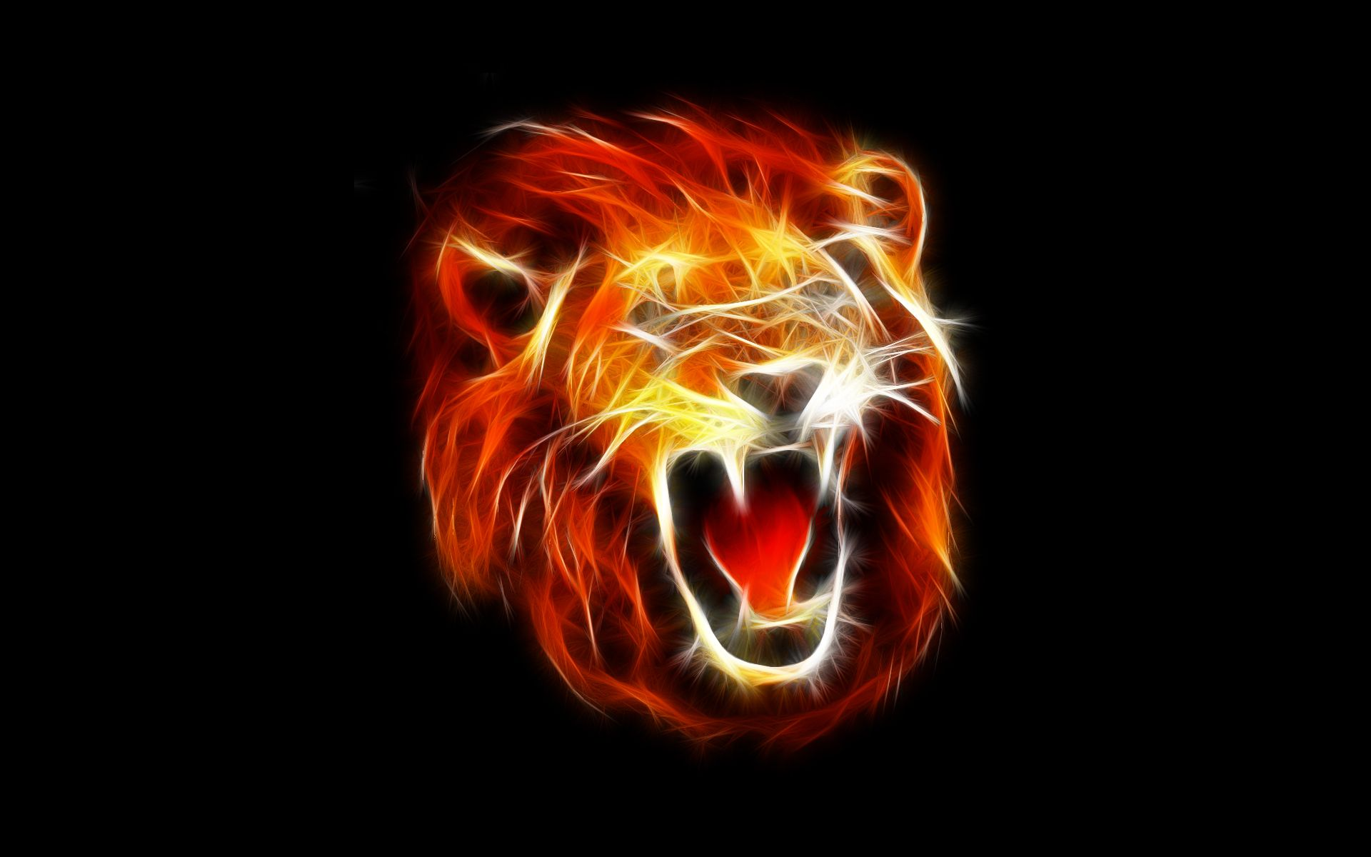 lion hd wallpapers 1024x768 - photo #32