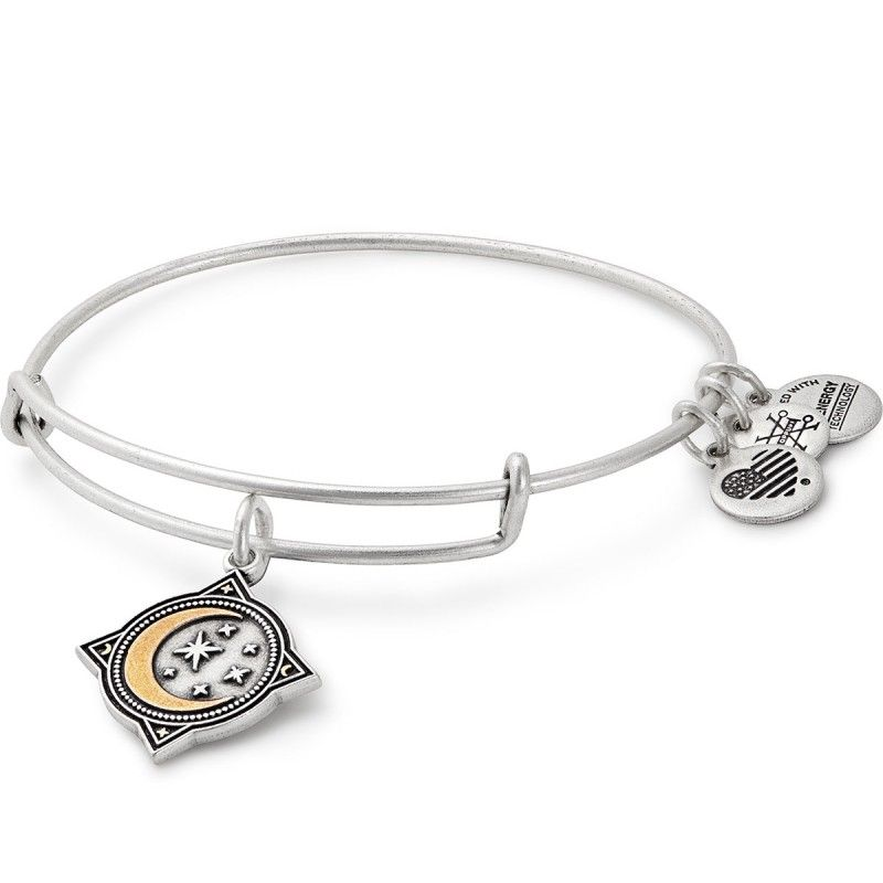 Alex and Ani Wonder Woman Logo Bangle Bracelet Rafaelian Silver or Gold NWTBC