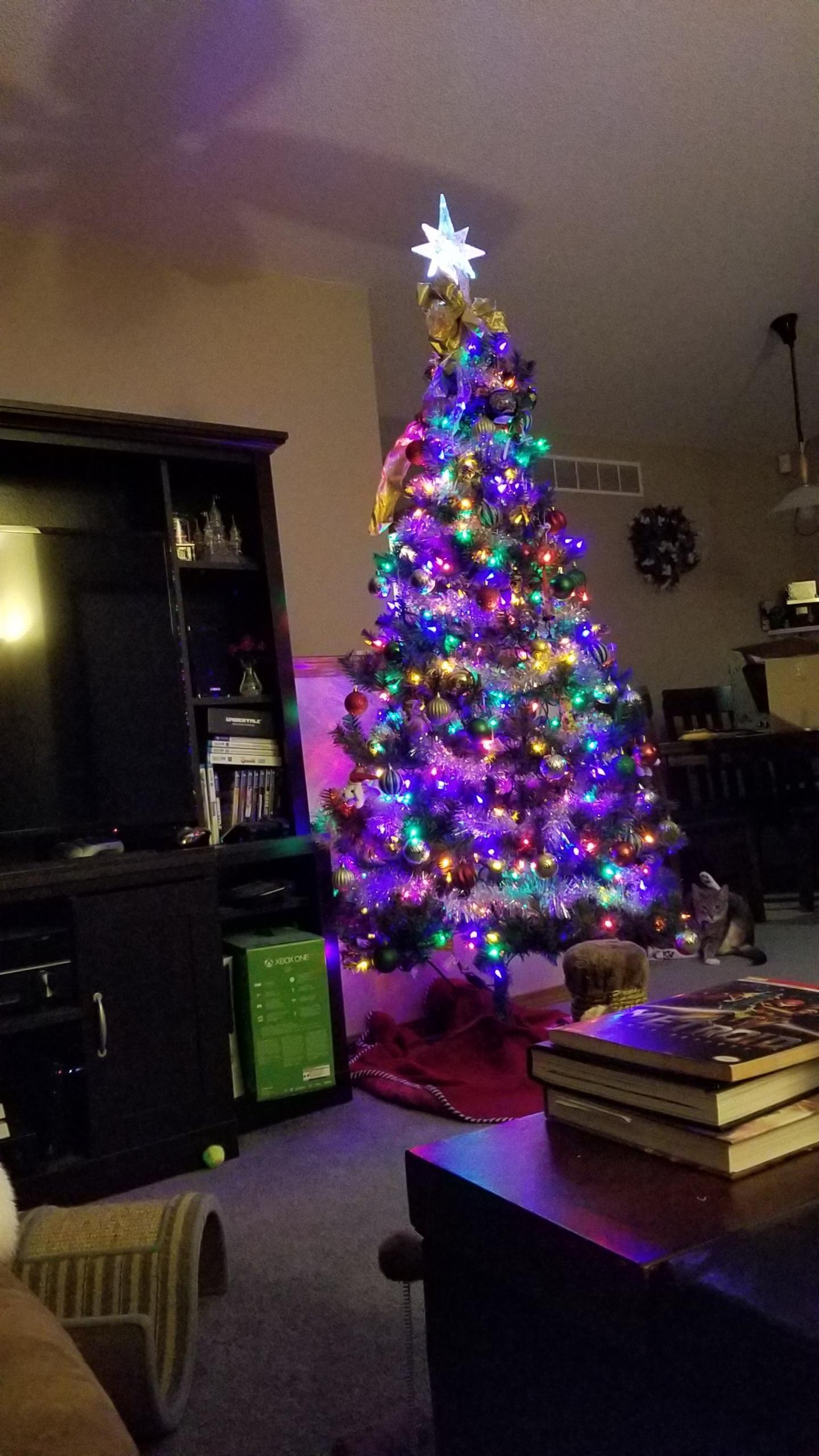 The Cat Photobombed my Nice Xmas Tree Photo... didn\'t notice till ...