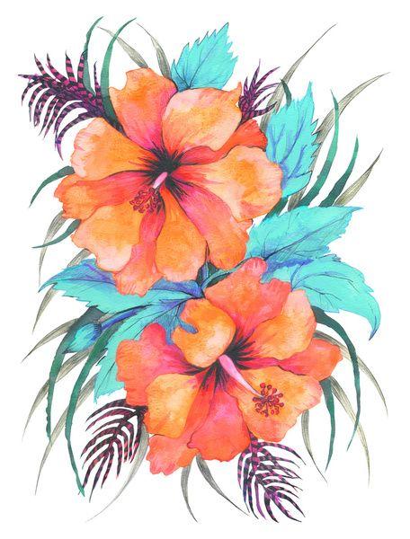 Tropical Flower Orange Hibiscus Art Print Arte Hawaiano Ilustracion Acuarela Flor Hawaiana Dibujo