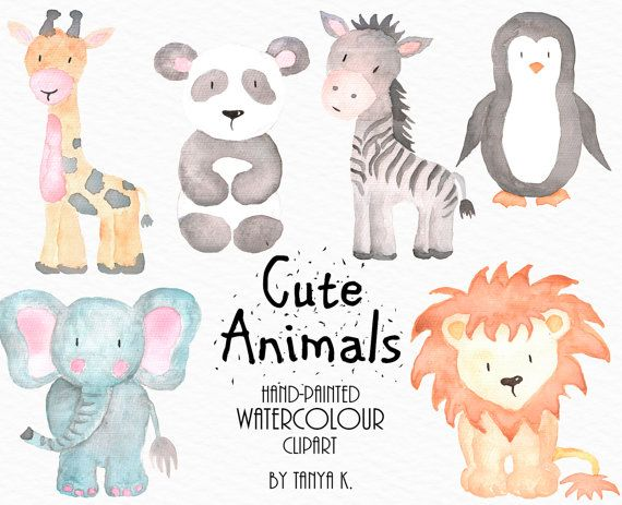 Animal Clipart Commercial Use Watercolor Animals Watercolor