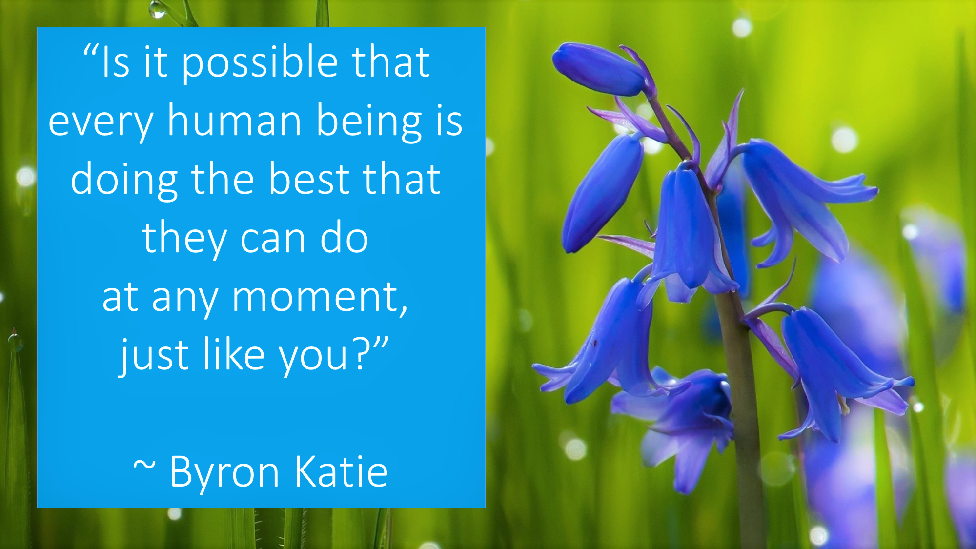 """""""Is it possible that every human being is doing the best that they can do at any moment, just like you?"""" ~ Byron Katie"""