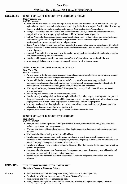Business Intelligence Analyst Resume Luxury Senior Manager Business Intelligence Resume Samples