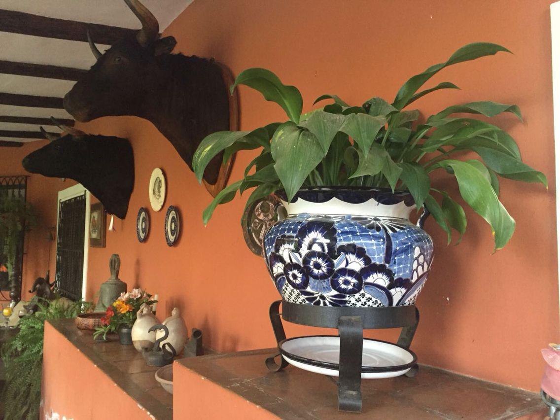 Decora tu terraza con esta hermosa maceta mexicana estilo Talavera. Para mayor información escríbenos a artmexperu@gmail.com