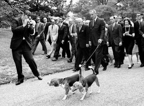 Lyndon Johnson And His Beagles Beagle Dogs Pets