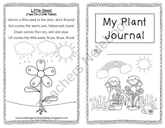 My Plant Journal for Young Learners from Kindergarten Kids