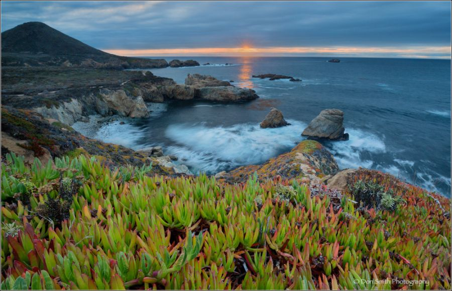 Build an Image in Your Mind  Winter Evening, Big Sur Coast - Don Smith Photography  http://donsmithphotography.wordpress.com/2014/01/08/build-an-image-in-your-mind/