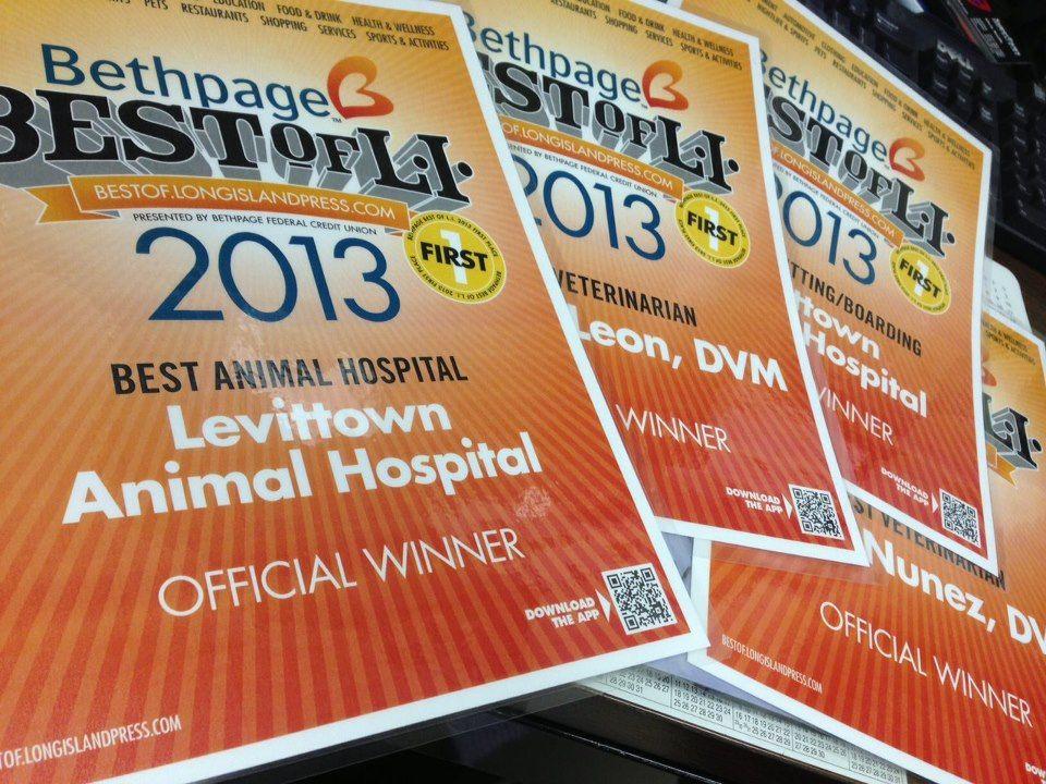 11+ Animal hospital of levittown ideas