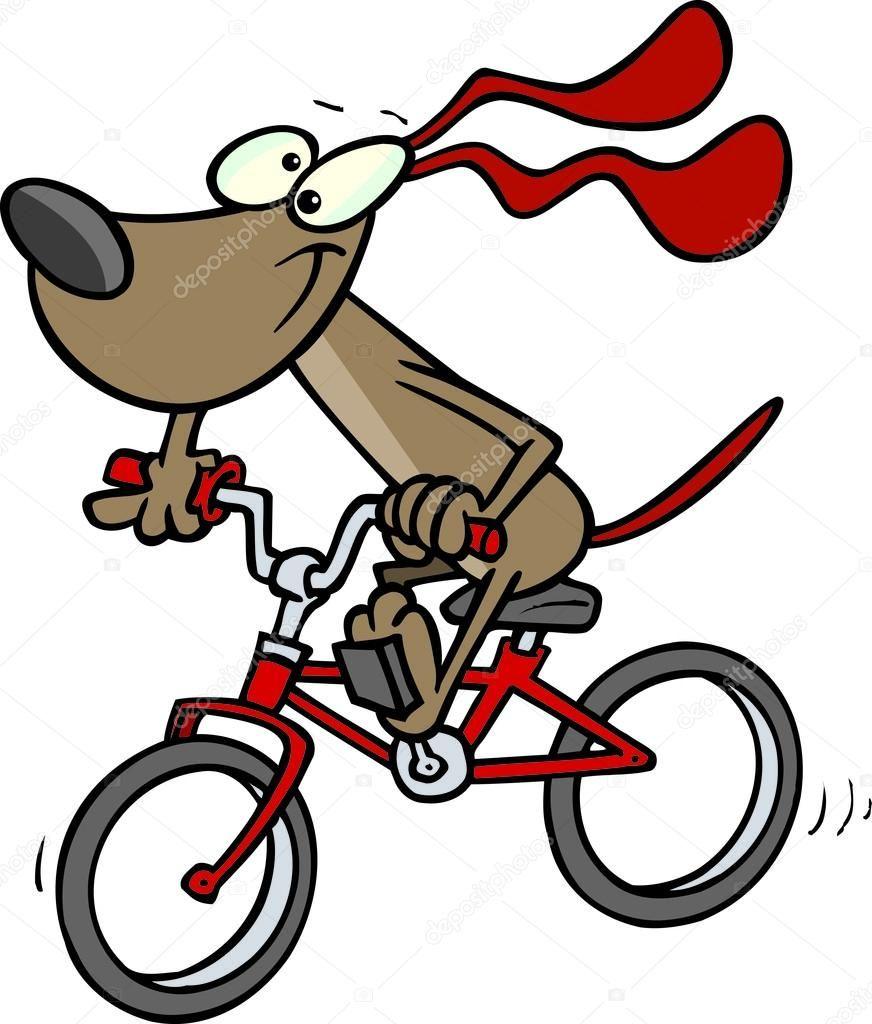 When Animal Ride Bikes Cartoon Dog Biking With Dog Bike Ride