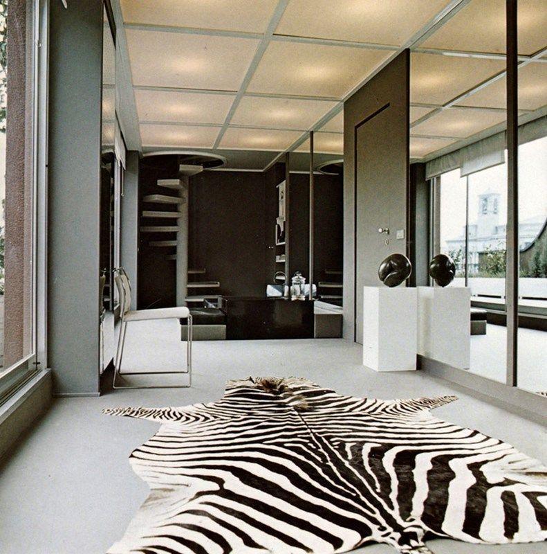 Zebra Rugs In Living Room Modern Room Decor Wild Living Room #zebra #decor #for #living #room