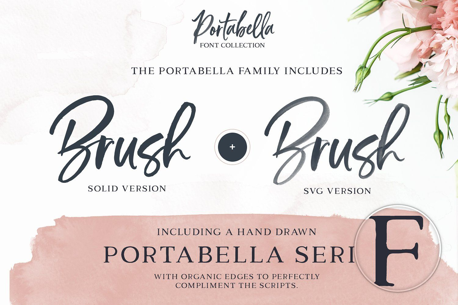 Portabella Font Collection Font bundles, How to draw