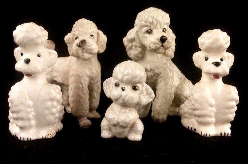 mini hippo puppy for sale texas