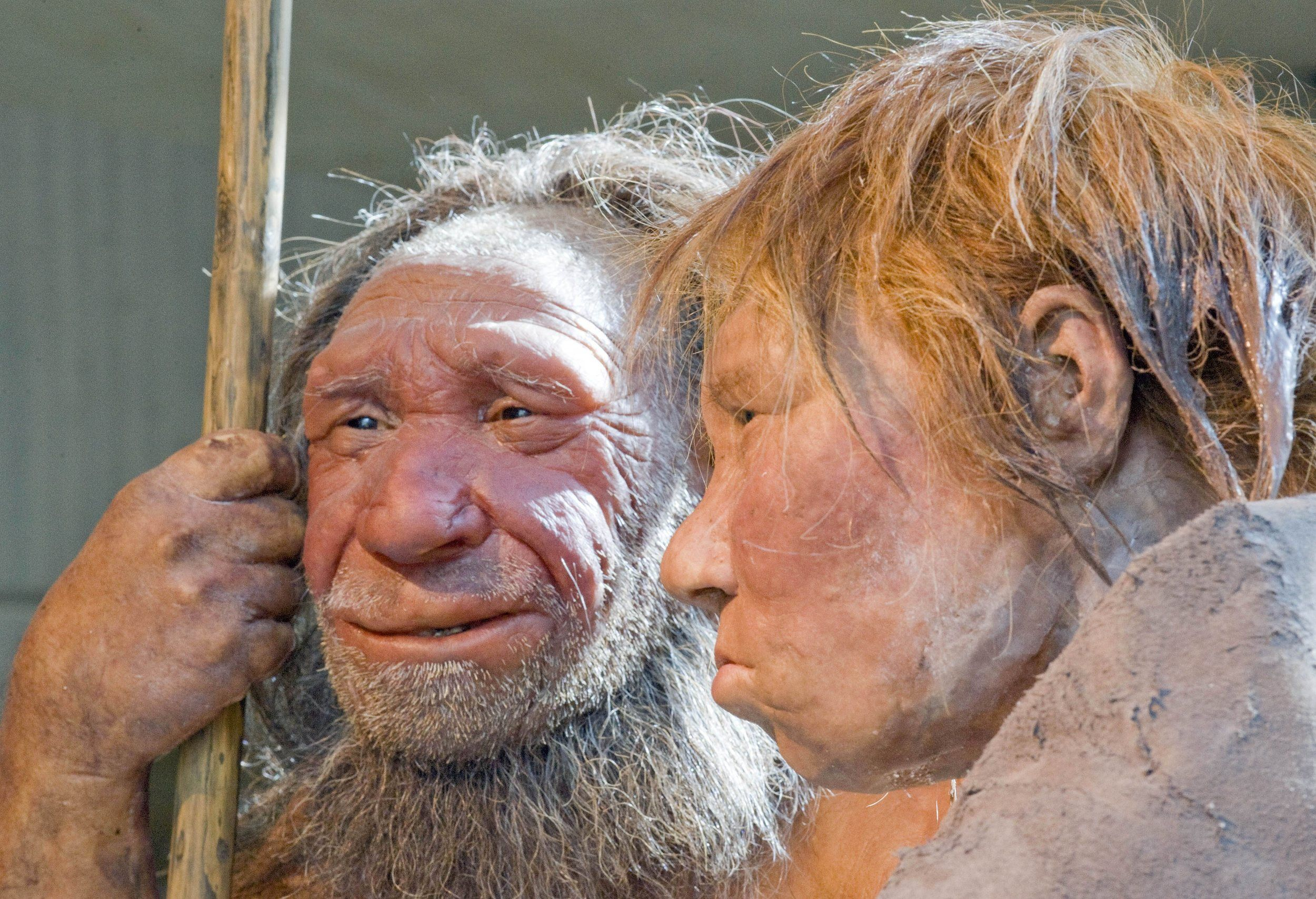 Carbon dating antropologie
