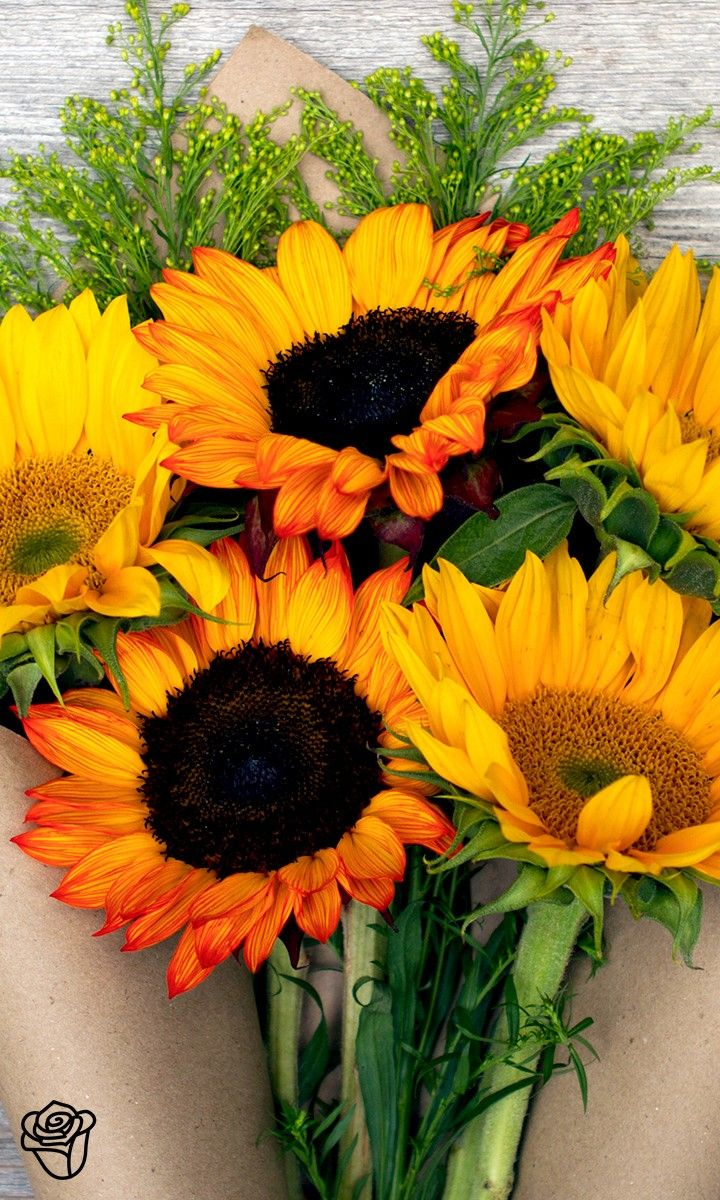 Lovely arrangement from the Bouqs Sunflowers and daisies