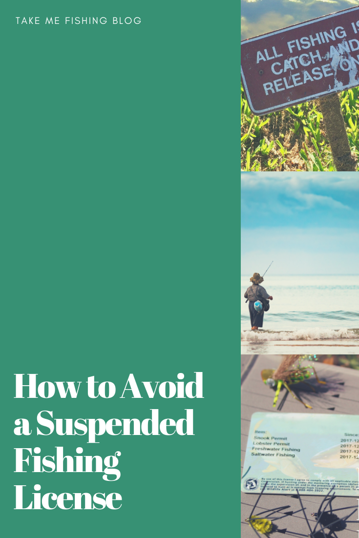 How to Avoid a Suspended Fishing License in 2020 Boating