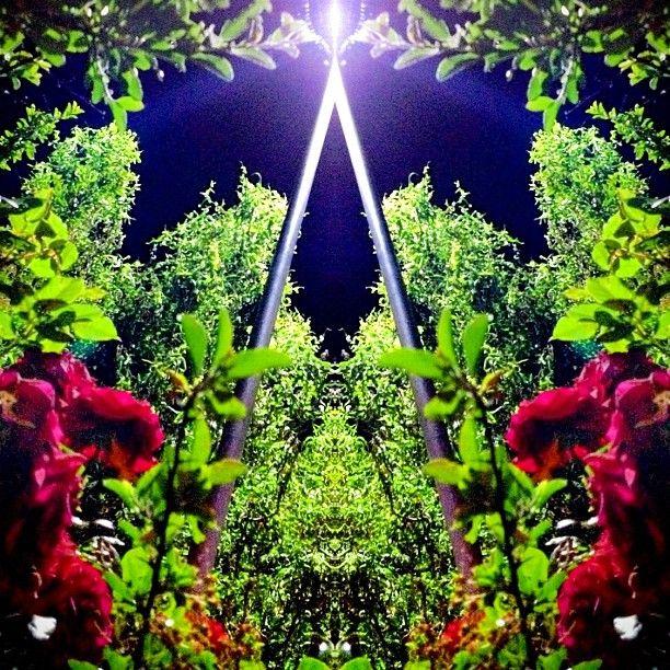 "@voidtechnician's photo: ""#mirrorgram"""