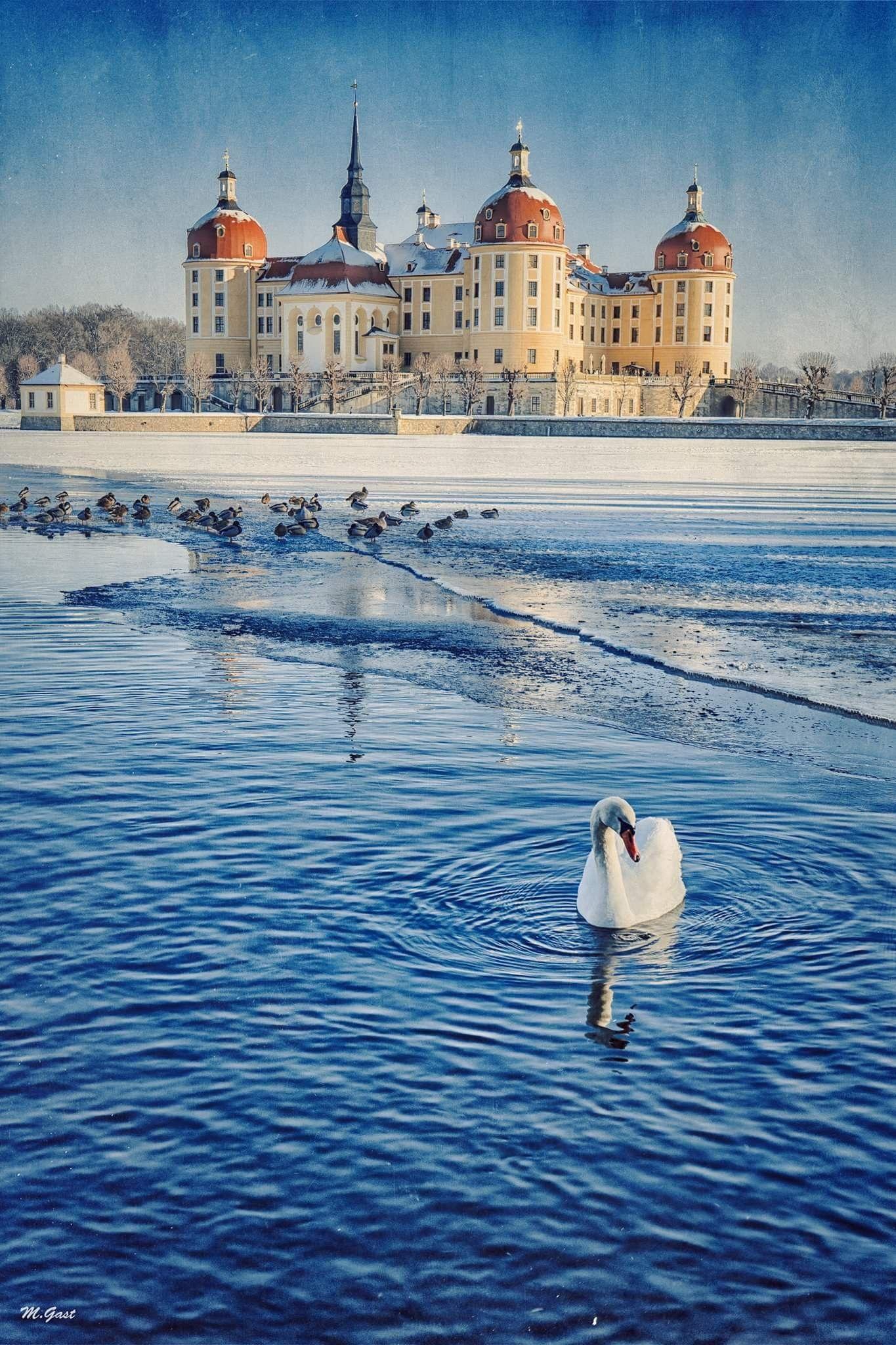 Das Jagdschloss Moritzburg Bei Dresden Immer Ein Besuch Wert Deutschland Burgen Moritzburg Orte Zum Besuchen