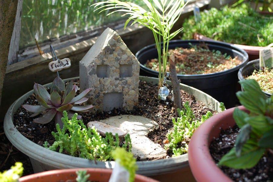 Pin by Roots Nursery on Fairy Garden   Fairy houses, Fairy
