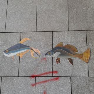 @janettesvn Instagram photos | Rather refined #streetart #graffiti #fish #Onmyrun #lookUp #Paris #Paris12 #parisjetaime #parismaville #parismonamour #IloveParis #instafrance #instaparis #igersparis #ig_paris