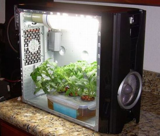 Stealth Hydroponic Grow Box & Stealth Hydroponic Grow Box | Hydroponics Systems Articles ...