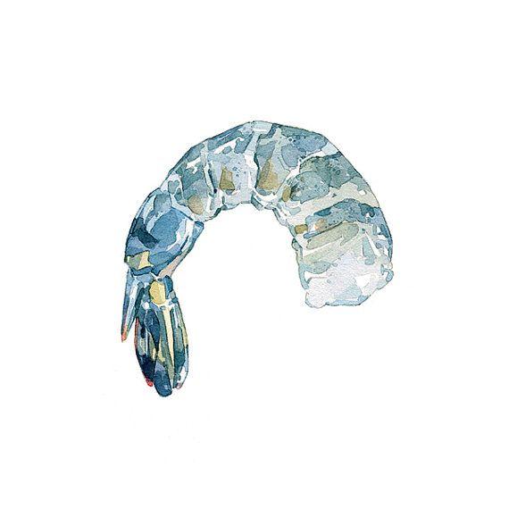 Shrimp watercolor - david scheirer food, seafood, art print, illustration