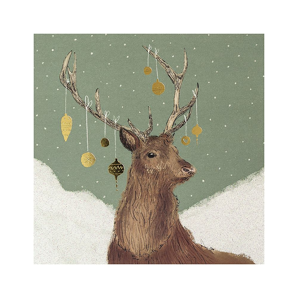 National Trust Dressed for Christmas Cards, Pack of 10 | Xmas Cards ...